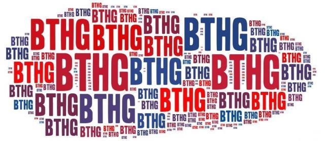 BTHG-Newsletter Nr. 28